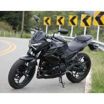 Kawasaki Z250 2013-2015 (2)