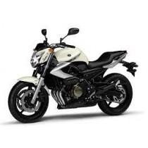 Yamaha XJ6 2009-2012 (2)