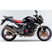 Kawasaki Z1000 2004-2006 (1)