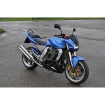 Kawasaki Z1000 2004-2006 (4)